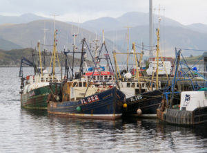 Fishing boats in Ullapool harbour