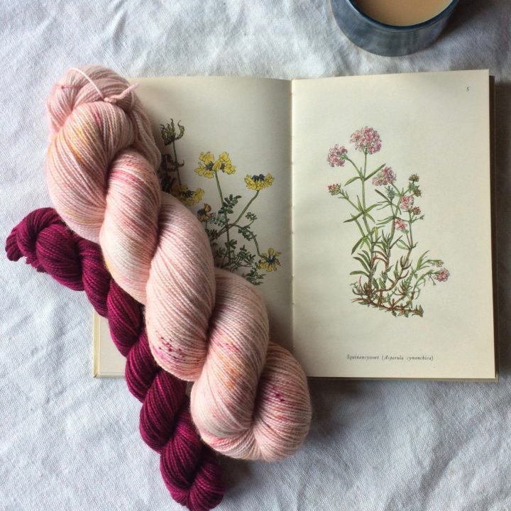 Two skeins of yarn laying on an open botany book. The larger skein is a soft pink and the smaller a rich magenta
