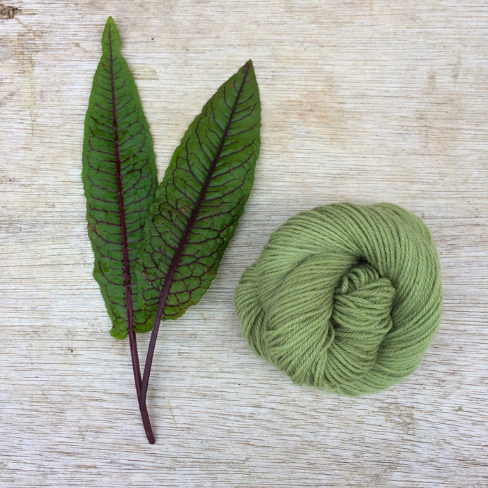 Two leaves of dock and a skein of green yarn